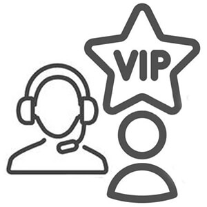 VIP driving lessons for french license